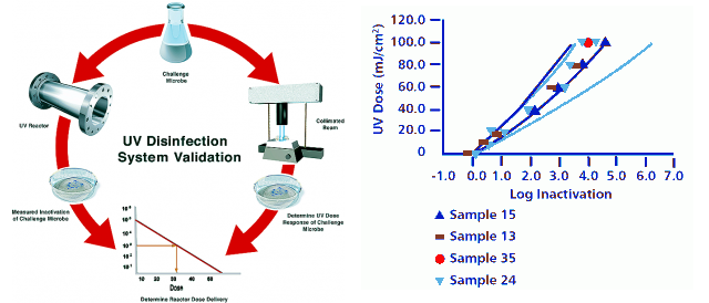Validation graph disinfection system