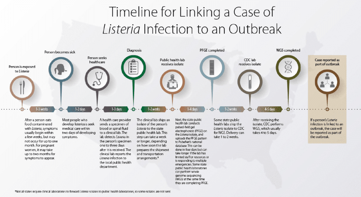 Lsteria Timeline Outbreak Chart